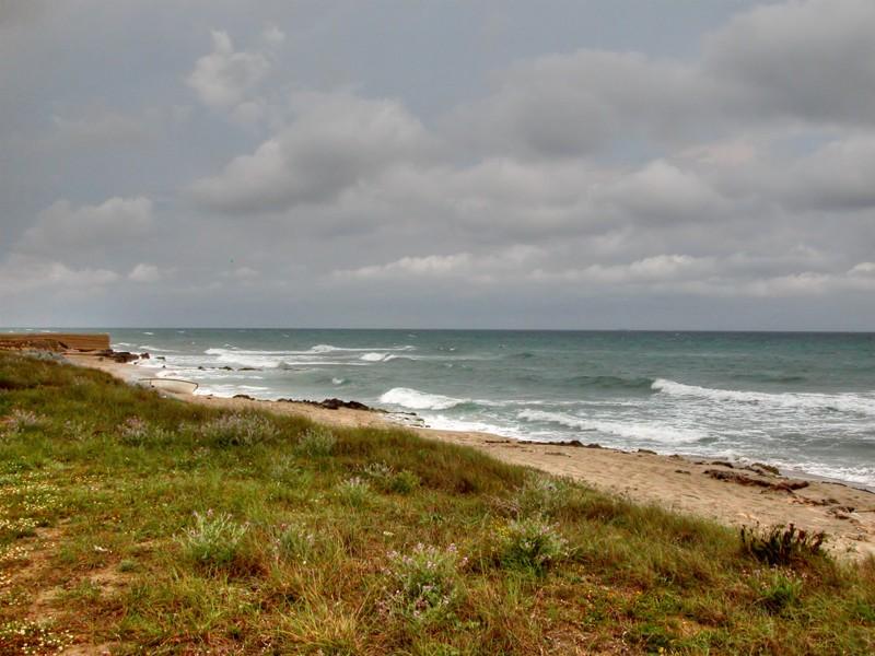 Le Cesine: Oasi naturalistica nel cuore del Salento