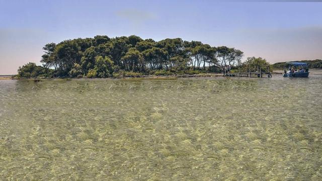 L'isola dei Conigli a Porto Cesareo