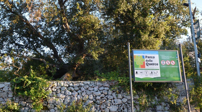 Il Parco delle Querce a Castro: Info e Curiosità