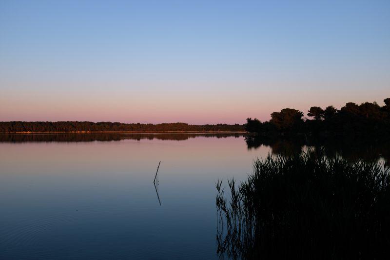Immersione nella natura ai Laghi Alimini