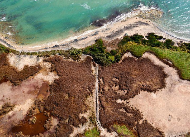 Salento: alle Cesine scoperto il grande molo del porto di Lupiae